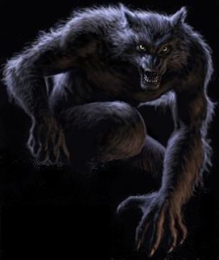 werewolfh_www_kepfeltoltes_hu_.jpg